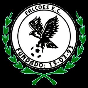 Super Copa Pioneer
