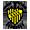Associação Esporte Clube Novo Sapopemba